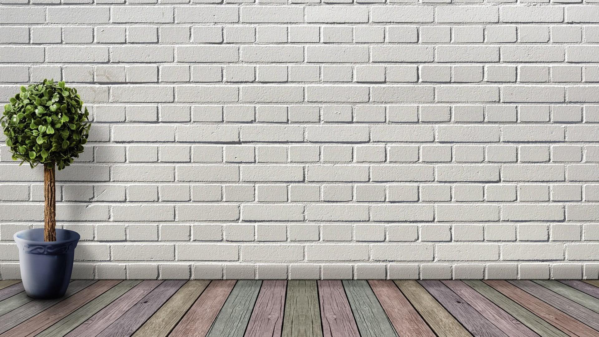 Comment décorer un mur blanc ?